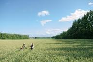 畑ガイドと行く「農場ピクニック」ランチ付きツアー<4名分>