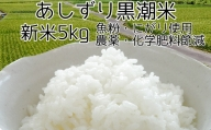 【L-14】あしずり黒潮米5kg(コシヒカリ)【令和3年産新米】8月中旬~順次出荷予定