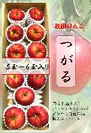 A9906 秋田県産つがるりんご 秀品5~6玉