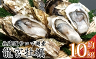 北海道サロマ湖産 龍宮牡蠣10kg(2年物殻付きカキ)カキナイフ付