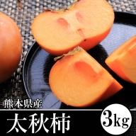 EF19 【先行予約】太秋柿3kg 秋のフルーツ