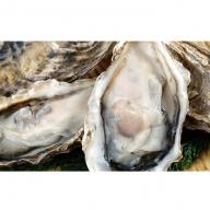 サロマ湖産【COYSTER(むき身)×2+殻付き龍宮牡蠣5kg】11月~12月発送