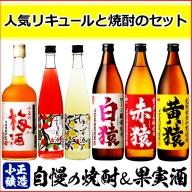 No.111  焼酎・梅酒セット(計6本) 黄猿や赤猿、白猿をはじめ人気のリキュールも! 【小正醸造】