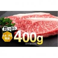 【A01010】鹿児島県産黒毛和牛サーロインステーキ(約200g×2枚)