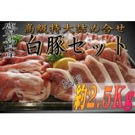 【A49005】鹿児島県産 高級特大詰め合せ  白豚セット 約2.5kg