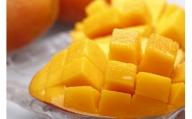 鹿児島県産 美味しさまるごと冷凍マンゴー!約1kg