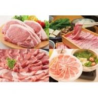 【C05002】鹿児島県産豚厚切りステーキ&豚4部位食べ比べわいわいセット6kg