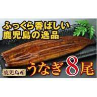 【C43012】鹿児島の逸品!うなぎ8尾