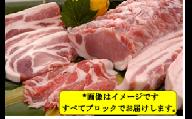 鹿児島県産豚2頭ブロックセット(6回送付定期便)