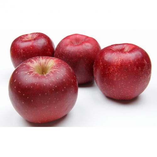 【2018年10月下旬よりお届け】そうべつ町産 レッドゴールドりんご3kg