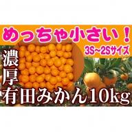 【地元民だけが知る本物の味】めっちゃ小さい濃厚有田みかん3S~2Sサイズ10kg
