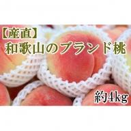 【産直】和歌山のブランド桃約4kg・秀選品
