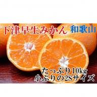 和歌山下津の早生みかんたっぷり10kg(2Sサイズ)