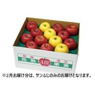 B3001 完熟りんご