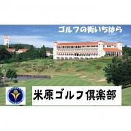 米原ゴルフ倶楽部【平日1R】セルフプレー券1名様券2枚(昼食付)