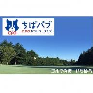 ちばパブ(CPGカントリークラブ)セルフプレーご招待券【平日のみ、1名様】を1枚