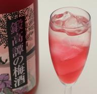 鍛高譚(たんたかたん)の梅酒[1800ml]【2本セット】【白糠町】