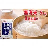 【令和元年産新米】無洗米北海道赤平産ゆめぴりか特別栽培米5kg×8回お届け