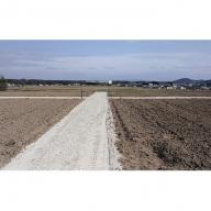 貸農園(約30平方メートル)1年間施設使用権+こしひかり白米10kg×3回