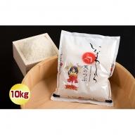 猪苗代町ブランド米 いなわしろ天のつぶ 10kg