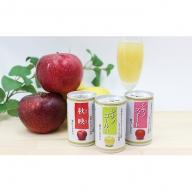 信州りんご三兄弟ジュースセット 160g×30本×3品種 90本  長野 お土産 お取り寄せ入