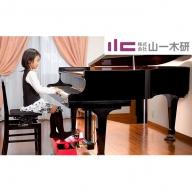ピアノ補助ペダルM-60