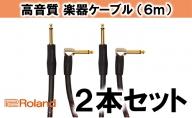 【Roland純正】高品質楽器ケーブル 6m/RIC-G20A 2本セット【配送不可:離島】