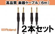 【Roland純正】高品質楽器ケーブル 6m/RIC-G20 2本セット【配送不可:離島】