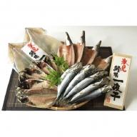 氷見産きときと魚一夜干し!鱈場特選一夜干し4種詰合せ!かます・あじ・いわし・するめいか
