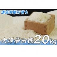 OO002令和元年産新米20kg大岸夢田穂