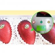 甘~い!!高糖度のみ厳選!!アナナス農園完熟アップルマンゴー1.6kg