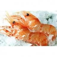 知床羅臼産ボタンエビ 中サイズ1kg(刺身用冷凍)