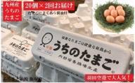 【A5-137】うちのたまご醤油セット(2回お届け)