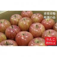 【B-018】青果市場厳選 りんご10kg(青森県または長野県産 約40玉)