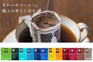【B4-009】きれいなコーヒードリップバッグ(12種・180袋)