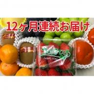 旬の選りすぐりフルーツ定期便(12ヶ月)