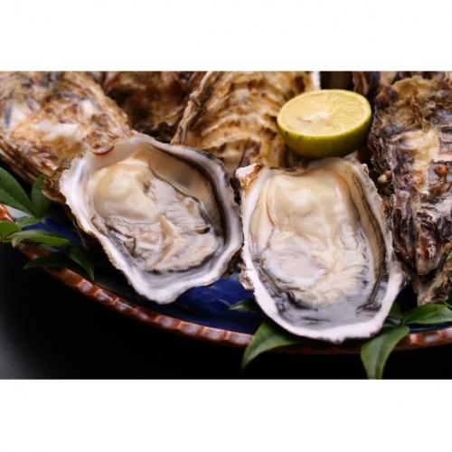 オホーツク佐呂間産 殻付き2年牡蠣3kg(25~30個前後)