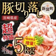 <宮崎県産豚肉5㎏切落し>※平成31年4月末頃迄に順次出荷【B193】