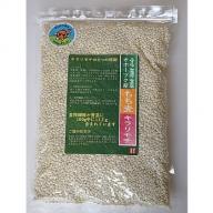 食物繊維が豊富 オホーツク産もち麦「キラリモチ」1kg