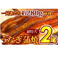 C-185 厳選!!「特上うなぎ蒲焼き」 超特大2本!!