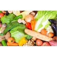 C-242 旬を味わう!!「季節の野菜&果物セット」 たっぷり21品