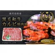 【A-439】鹿児島県産A4等級以上黒毛和牛カルビ焼肉用500g