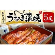【C-459】大隅産 うなぎ 蒲焼 5尾