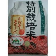 TC‐04 特別栽培米のミルキークイーン10㎏ ★1月中旬頃から順次発送します