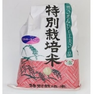 TC‐04 特別栽培米の新米ミルキークイーン10kg