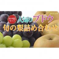 ☆先行予約【秋の味覚セット】人気のブドウ2種&旬の梨の詰合せ