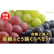 ☆先行予約 葡萄三昧 高級ぶどう味くらべセット(3種2房)