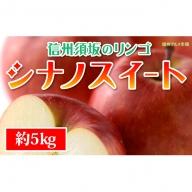 ☆先行予約【信州須坂のりんご】シナノスイート≪秀品≫約5kg