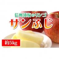 ☆先行予約【信州須坂のりんご】サンふじ≪秀品≫約5kg