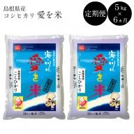 44-SS-3 BG無洗米【定期】コシヒカリ 5kg/6ヵ月